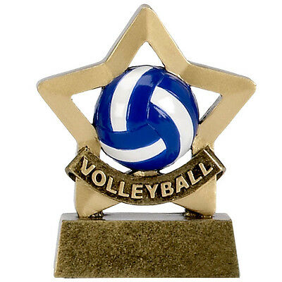Volley Ball Mini Star Trophy Ball Player Engraved Free Award Gift