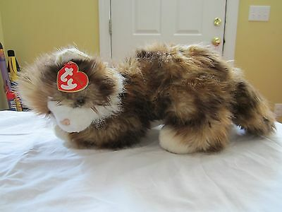 Ty Beanie Classic Jumbles the Cat 2004 EC!