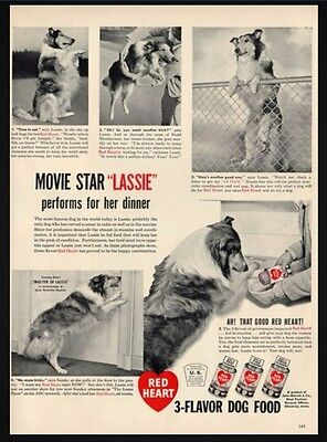 1948 Rare Red Heart Dog Food featuring Lassie the movie star Collie PRINT AD