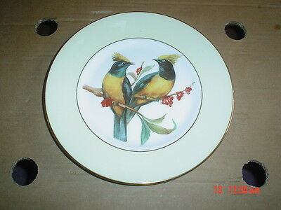 Elizabethan Fine Bone China Yellow And Black Bird Collectors Plate