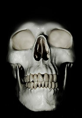 Short Story Writing Service - 600 Word Halloween Horror Story - Full Rights