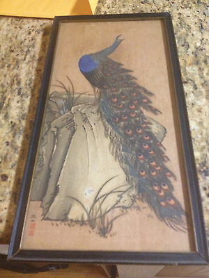 "Vintage 16"" x 8"" Framed Asian  Peacock signed"