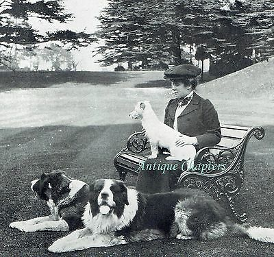 Lady Mary Hamilton Easton Park Suffolk 1906 2 Page Photo Article A338