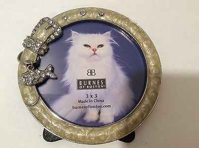 Cat Picture Frame - Bling Collar With Fish - Picture Size 3 X 3 Inches - NWT