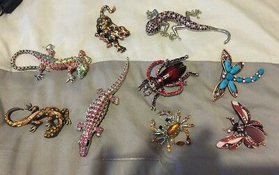Lot Contemporary Brooches Geckos Tigers Dragon Flys Pretty