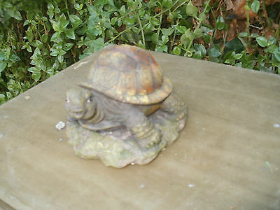 THE TURTLE mold for plaster or concrete LATEX ONLY