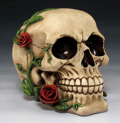 LATEX ONLY MOLD  for plaster or concrete  skull ready to ship