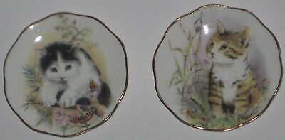 """Darling KITTENS 3"""" MINIATURE Fine BONE China PLATES Made in ENGLAND"""
