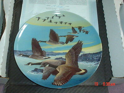 Dominion China Ltd Collectors Plate SOUTHWARD BOUND - Geese