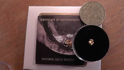 West Australian Gold Nugget Certified by Perth Mint