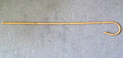 AUTHENTIC  SENIOR Rattan/Kooboo CROOK handle -School punishment Cane