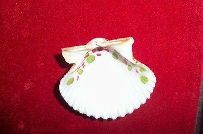 Antique Hand-painted Real Scallop Seashell ~ Pretty