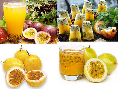 50-Fresh Thai Yellow Passion Fruit Seeds For Cultivation