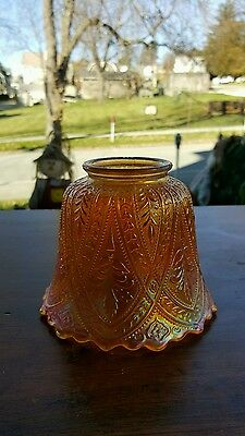 Northwood Carnival Glass Olympus Marigold Lamp Shade Wow!