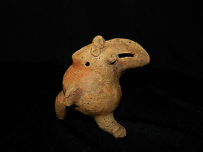 Pre-Columbian Toucan with Incised Lines, Nicoya, Authentic, Very Rare