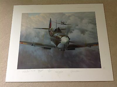 Portrait of a Thoroughbred by Gerald Coulson, Limited Edition, Veteran Signed