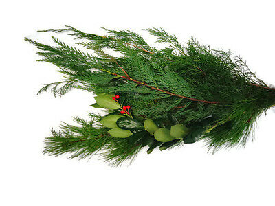 Holiday Magic Bouquet, Fresh Pine bunches, gold cedar pine and curly willow