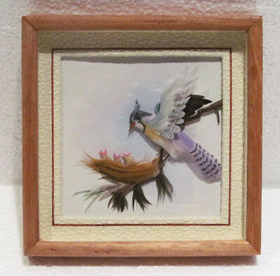 Original Feather Wall Art Blue Jay Bird & Babies in Nest Framed Shadowbox Scene