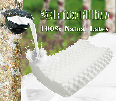 2 x Natural Latex Bedroom Pillow Pillow Cover Large 60 x 40 x 12/10 cm