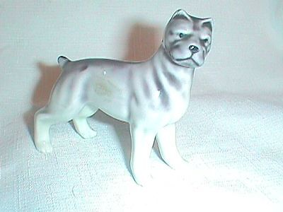 PIT BULL Terrier Dog FIGURINE Figure