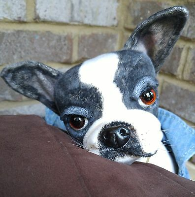 OOAK~collectable~poseable~Boston Terrier~French Bulldog~puppy~dog