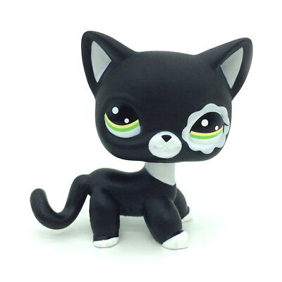 Hasbro Littlest Pet Shop Collection LPS Shorthair White Black Kitty Cat Rare