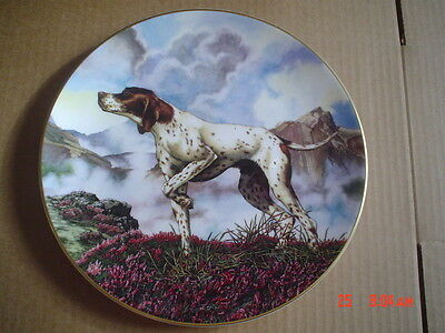 Royal Doulton Collectors Plate POINTER PN172 From DOGS IN ACTION
