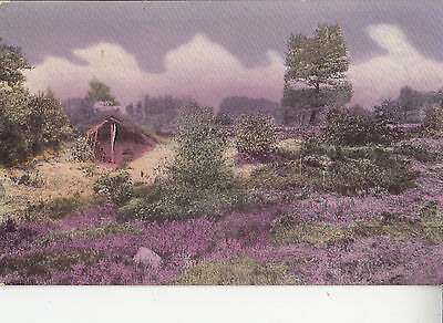BQ99.Vintage Postcard.Purple tinted view of the countryside.