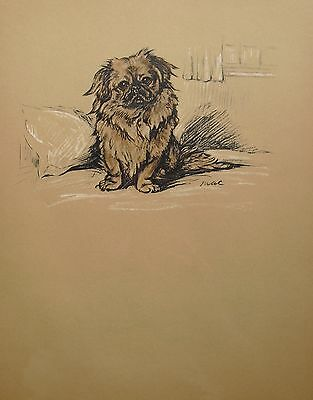 "Vintage Lucy Dawson Print 1940 ""DOGS""  Size: 9"" x11"" Illustration is her Dog MAC"