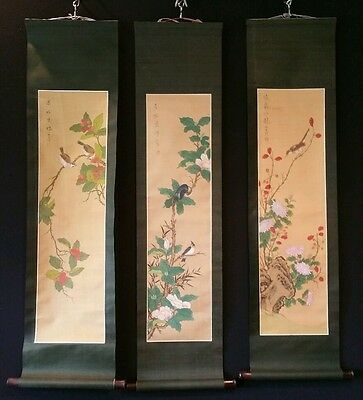 3 Chinese Hand Painted Scroll Paintings Birds On Flowering Branches Vintage NIB