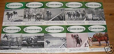 Vintage 1969 Blood Horse Thoroughbred Racing Magazine Lot Derby + Arts & Letters