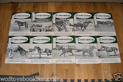1977 Blood Horse Thoroughbred Racing Magazine Lot Kentucky Derby Majestic Light