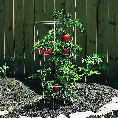 """10 Set Plant Support Wire Cage 33"""" Galvanized Garden Stand Vegetables Flowers"""