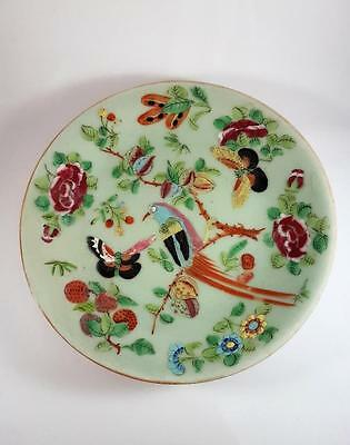 ANTIQUE MID 19th CENTURY CHINESE FAMILLE ROSE CELEDON GLAZE CANTON PLATE