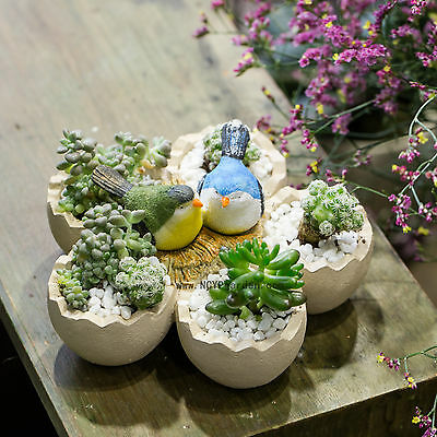Bird and Timber  Resin Flowers Succulent Plants Pot Flower Pot Cactus Planter