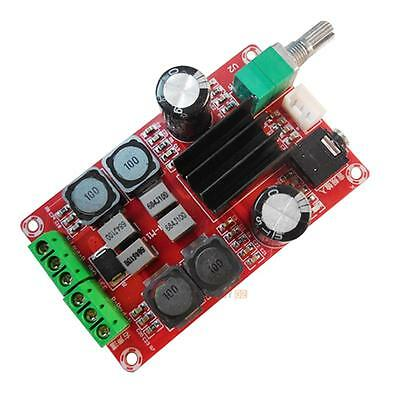 2 x 50W TPA3116 D2 Dual Channel Digital Audio Amplifier Board 12V-24V Arduino UK