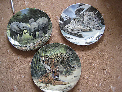 Set of Young Survivors Limited Edition 3 Plates by Davenport Pottery