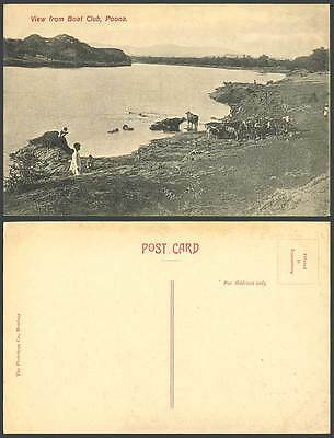India Old Postcard View from BOAT CLUB, POONA Pune, Buffalo Cattle Cow, Children