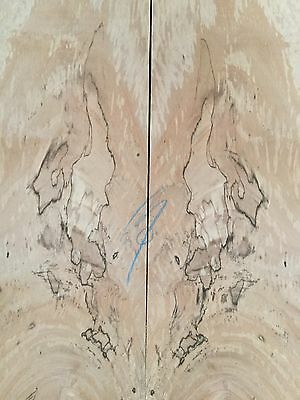 Spalted Plane Tree Electric Guitar Drop Top . Luthier . Box Making #387