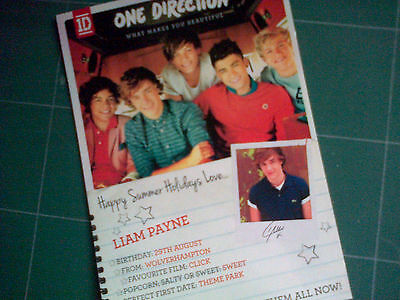 One Direction What Makes You Beautiful 1D Liam Payne RARE! Print!