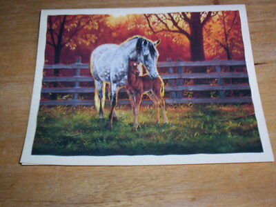 15  Arabian Mare & Foal  Deluxe Blank Note Cards, Envelopes & Envelope Seals
