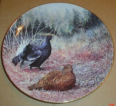 Wedgwood Collectors Plate WINTER WOODLAND EDGE - BLACK GROUSE
