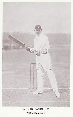A SHREWSBURY. Nottinghamshire CCC. County Print Services Golden Age Series...