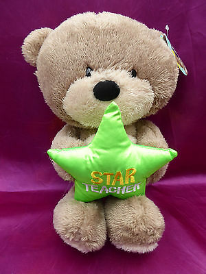 Hugs Star Teacher Teddy