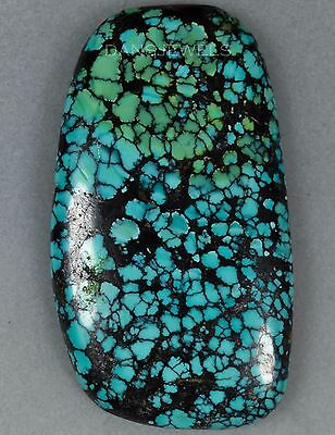 Loose Spiderweb Hubei Chinese Turquoise Cabochon 21 Grams 105 Carats 31x55mm