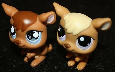 Lot Of 2 - Vintage Littlest Pet Shop Kangaroos - #983 & #682 Kangaroo