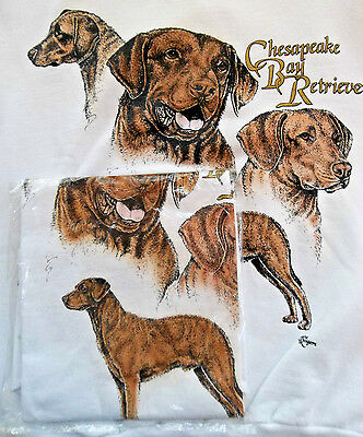 Chesapeake Bay Retriever Sweatshirt  & T-shirt Set Small ( 34 - 36 )