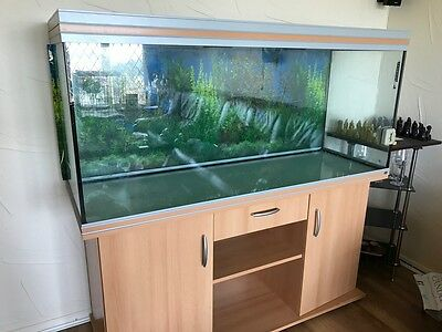 5' Fish / Reptile Tank with Cabinet