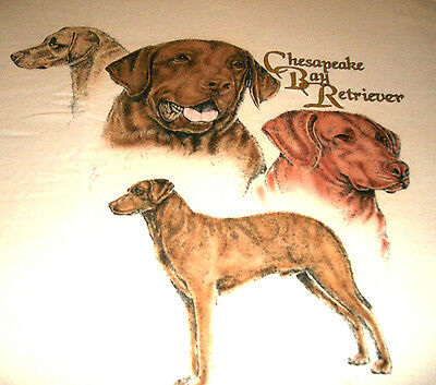 "Chesapeake Bay Retriever T-shirt "" Natural "" Medium ( 38 - 40 )"