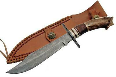 NEW Damascus Steel Crown Stag Horn Bowie Knife